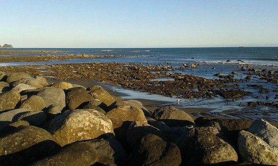 Coastal Walkway: rock pools