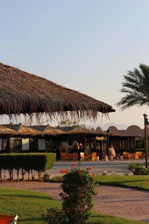 Caribbean World Resorts Soma Bay : hotel teritory