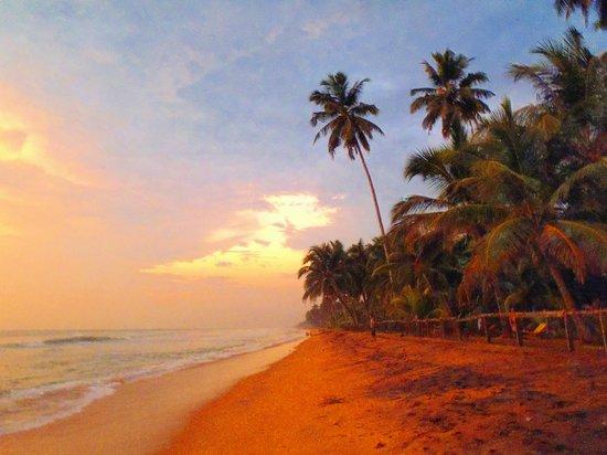 Villa Ocean View Hotel: Plaża - zachód słońca