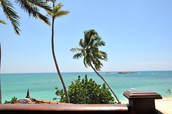 Thaproban Beach House : Utsikt från rum
