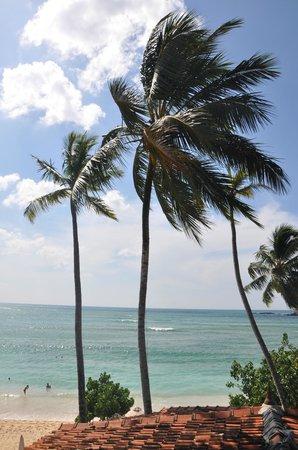 Thaproban Beach House: Utsikt från rum