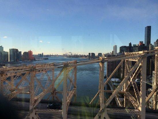 Roosevelt Island Aerial Tram: Вид на реку