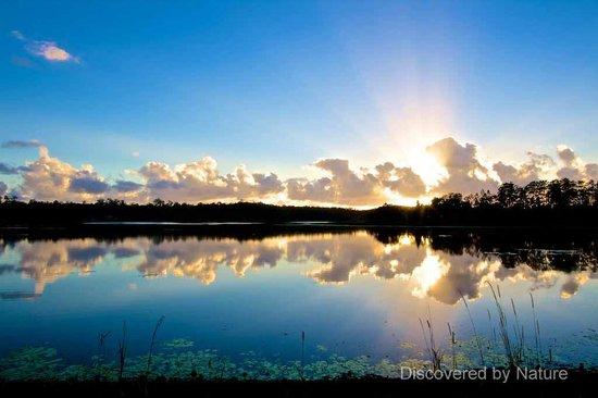 Lake Macdonald at Sunrise from the Noosa Botanic Gardens