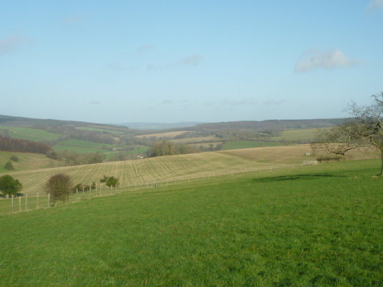 The Old Granary B&B: South Downs National Park