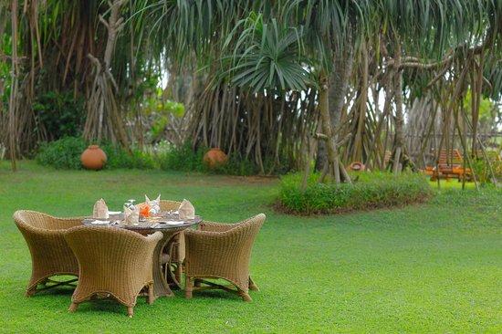 Aditya: Garden area