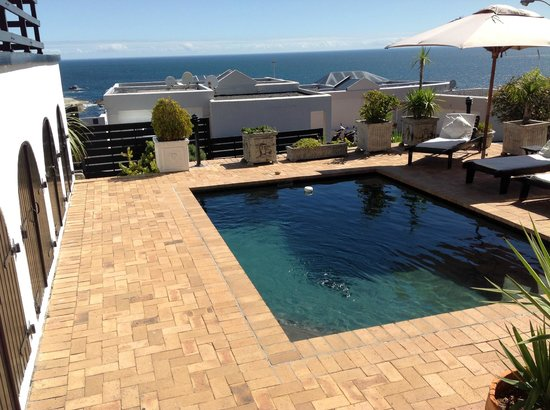 51 On Camps Bay Guesthouse: Chilled dip pool with a view