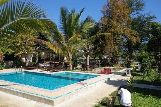 Piya Guest House: pool