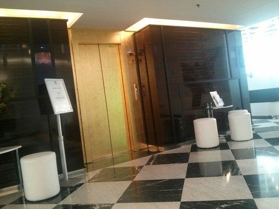 Hôtel Holiday Inn Paris Gare Montparnasse : Lift lobby area