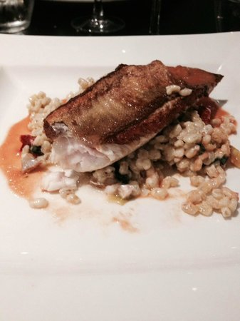 Mercure Exeter Southgate Hotel: 'gurnard and pearl barley with butter tomato sauce special' for dinner in the hotel restaurant