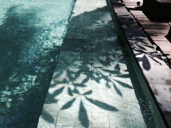 Kebun Villas & Resort: What a fine day!