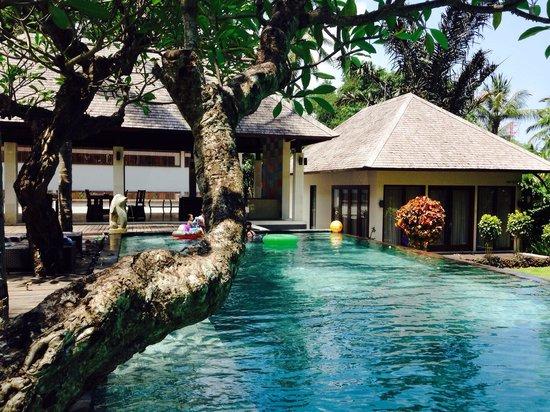 Kebun Villas & Resort: Cendana Villa private pool