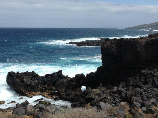 Melia Hacienda del Conde: La côte aux abords de l'hôtel