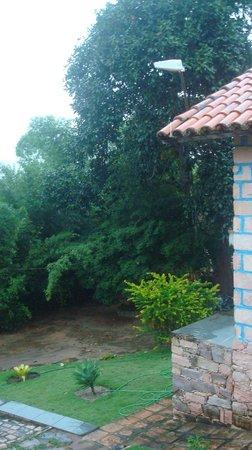 Bosque do Lapao: Visão da minha janela