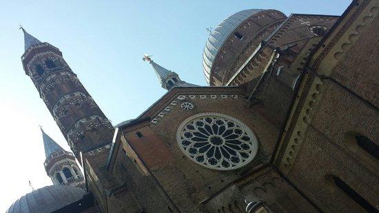 Basilica di Sant'Antonio - Basilica del Santo: Basilica di Sant'Antonio vista lateralmente