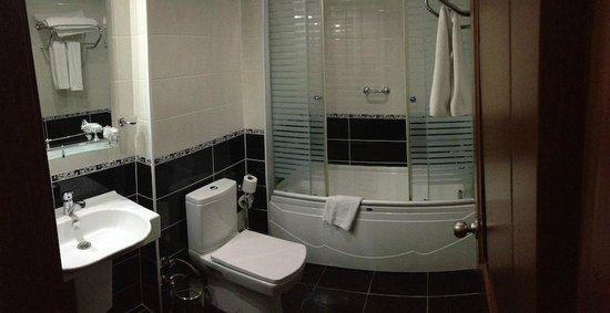 Basileus Hotel: Very simple bathroom
