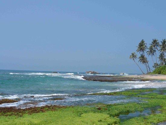 Lahiru Villa : Beach View
