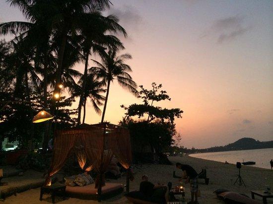 Coco Tam's : sunset