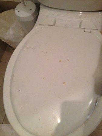 Treasure Island Resort: toilet