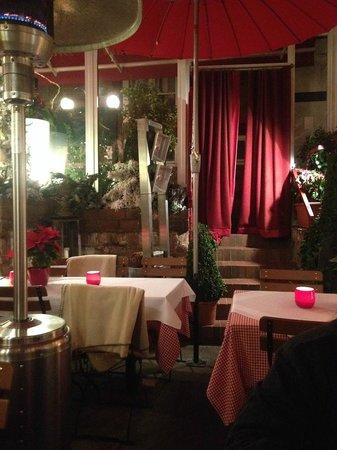 Katzen-Café: Delicious food, in cozy setting