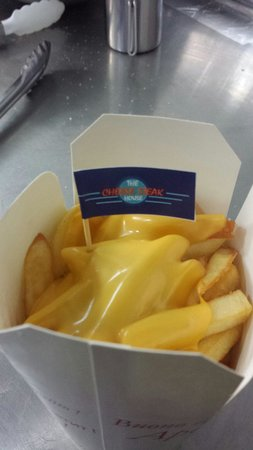 The Cheese Steak House : Cheese fries!