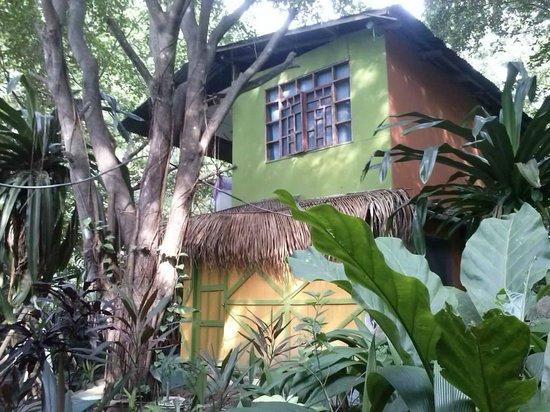 La Casa de Manito : View from the garden.