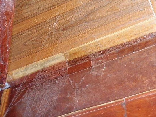Anda Resort : Ædderkoppesindene var meget store og havde siddet meget længe