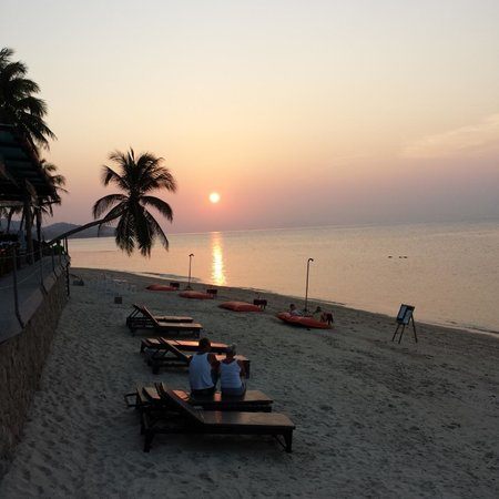 Mimosa Resort & Spa: Sunset view from the restaurant on the beach