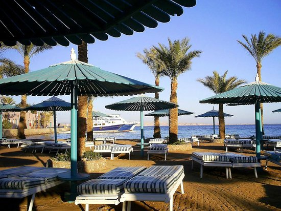 Le Pacha Resort : Пляж