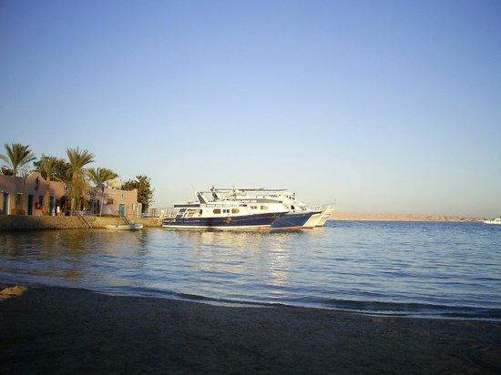 Le Pacha Resort : С пляжа