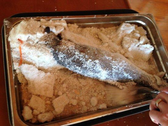 Misko The Oldest Fish Restaurant on Ada Bojana : Ulcinj Misko BRANZINO