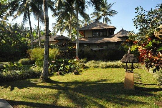 Villa Semana: Villas