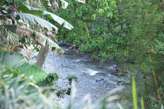 Villa Semana: River activities