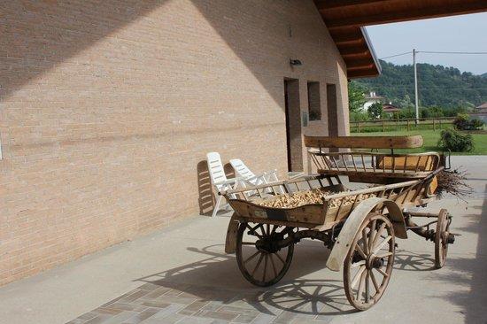 Azienda Agricola Giovanni Dri
