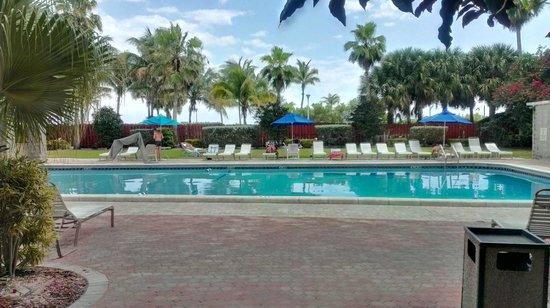 Seagull Hotel Miami South Beach: Бассей.