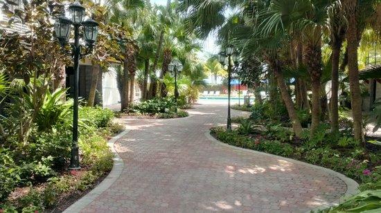 Seagull Hotel Miami South Beach: Дорожка к бассейну. Справа и слева номера с отдельными входами, типа бунгало.