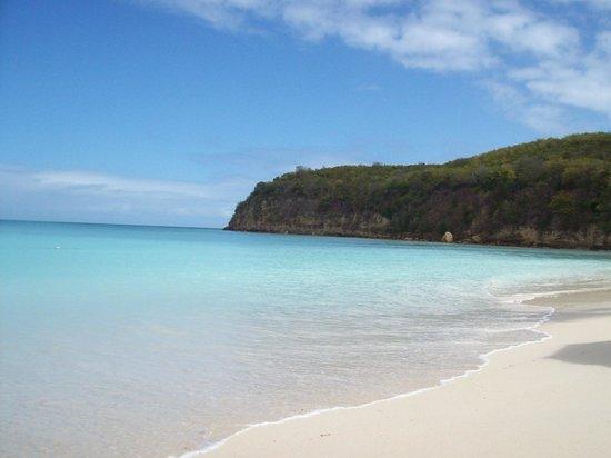 Halcyon Cove by Rex Resorts : Notre paella au bout de la plage