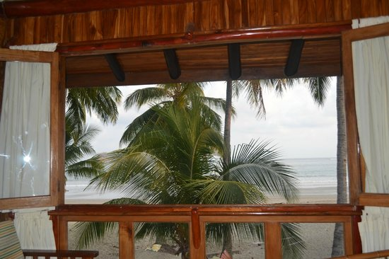 Samara Tree House Inn: view