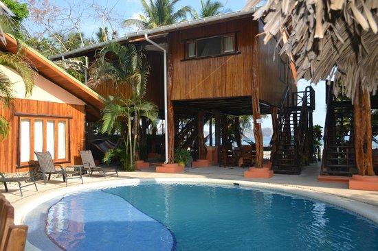Samara Tree House Inn : room