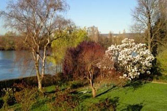 La Canotiere : Magnolia in flower