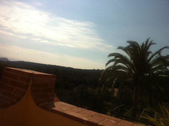 Sant Pere del Bosc Hotel & Spa: The view from my window (as well)