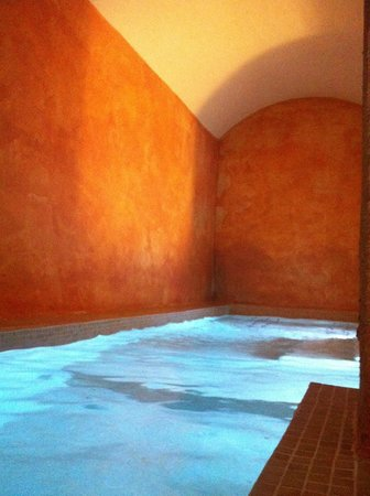Sant Pere del Bosc Hotel & Spa: Small swiming pool (near hamam)