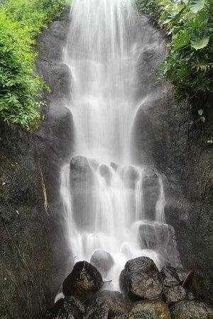 Eden Project: The waterfall in the Rainforest Biome