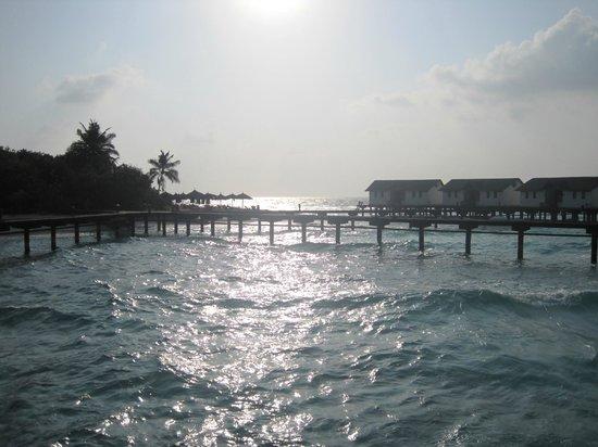 Reethi Beach Resort: Water Villas