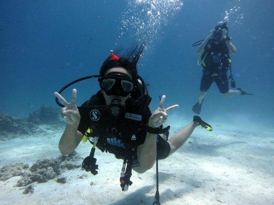 Indepth Dive College : Good job