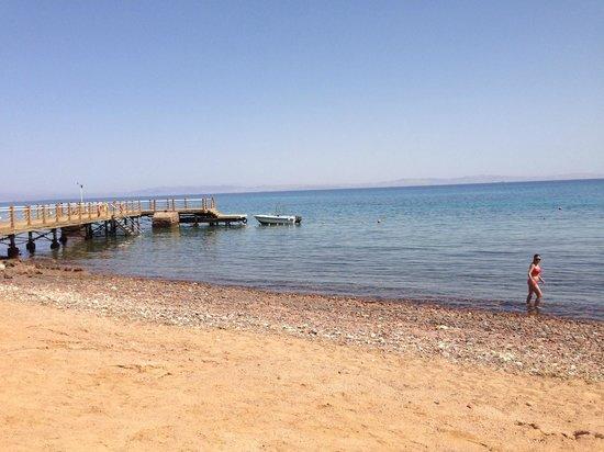 Le Meridien Dahab Resort: Good snorkelling area at the hotel