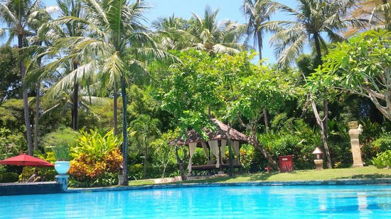 The Laguna, a Luxury Collection Resort & Spa: garden in the fron of our room (149)