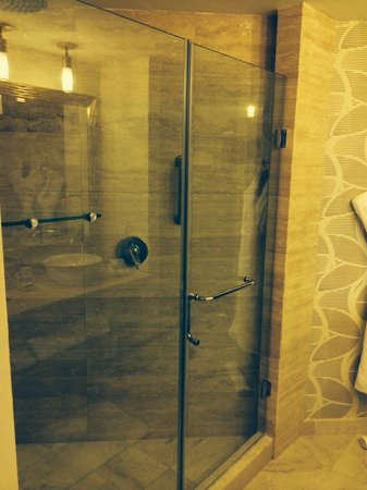 Waldorf Astoria Panama: Huge walk-in shower