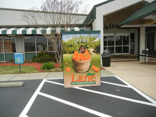Lane Southern Orchards: Kids can pose for a picture!