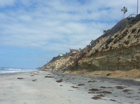 Leucadia Surf School: Surroundings