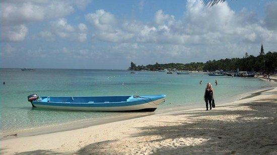 Infinity Bay Spa and Beach Resort: beach at resort in Roatan